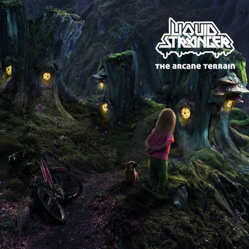 LIQUID STRANGER The Arcane Terrain (Interchill) CD