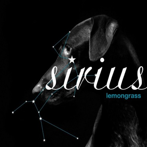 LEMONGRASS Sirius (Lemongrassmusic) CD | Ultimae Shop