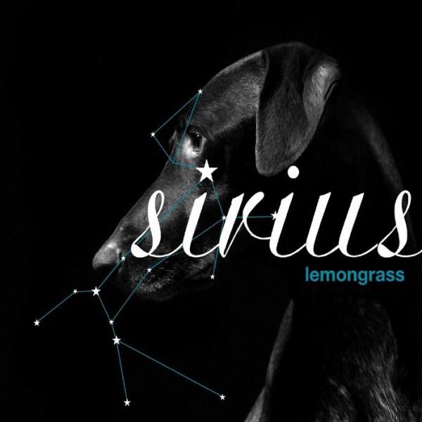 LEMONGRASS Sirius (Lemongrassmusic) CD   Ultimae Shop