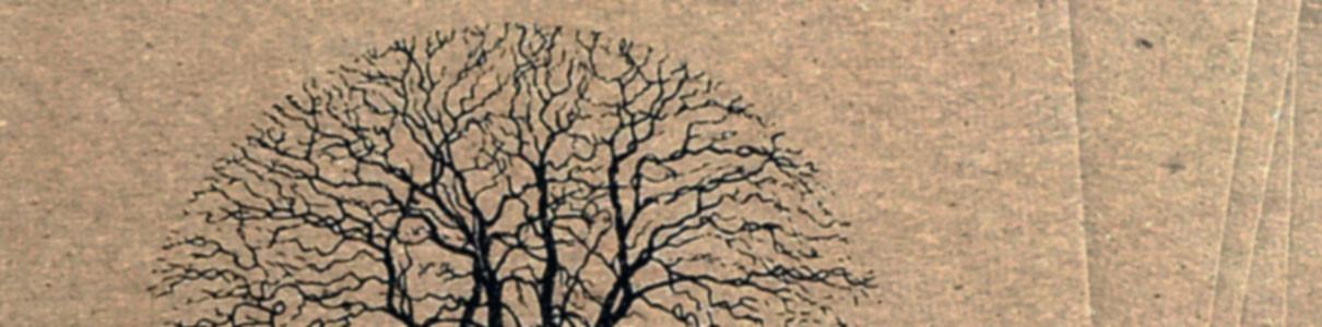 THE WANDERING II COMPILATION | Silent Season (3xCD)