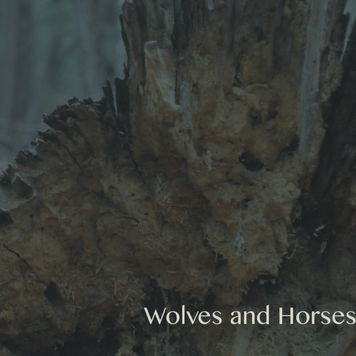Wolves and Horses EP (UAE Records)