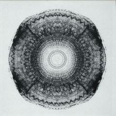 MOGANO | Sycomore (Arboretum) - Vinyl