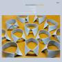 OREN AMBARCHI | Quixotism (Editions Mego) - Vinyl