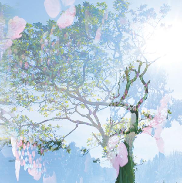 ISHQ | Autumn Light – CD