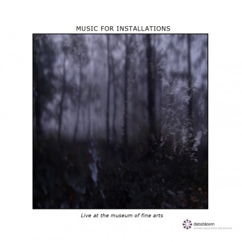 MUSIC FOR INSTALLATIONS   Live at the Museum of Fine Arts