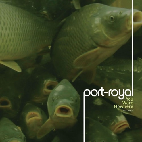 PORT-ROYAL | You Ware Nowhere [Remixes] - n5MD