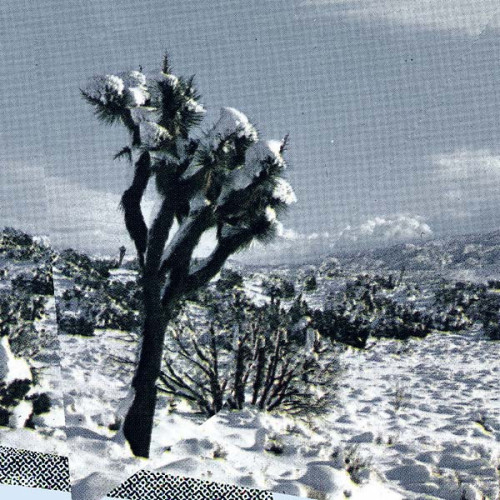 AMBARCHI/JAEGER/RUSHFORD | Pale Calling (Black Truffle)
