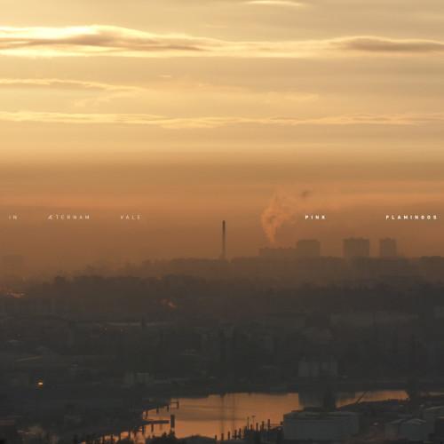IN AETERNAM VALE | Pink Flamingos ( Dement3d ) - LP