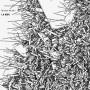 MICHAL WOLSKI | La Mer ( Recognition ) - CD