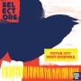 MOTOR CITY DRUM ENSEMBLE | Selektor 001 (Dekmantel) - CD