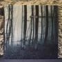 JAMES MURRAY   Ghostwalk (Ultimae) - Vinyl/Download