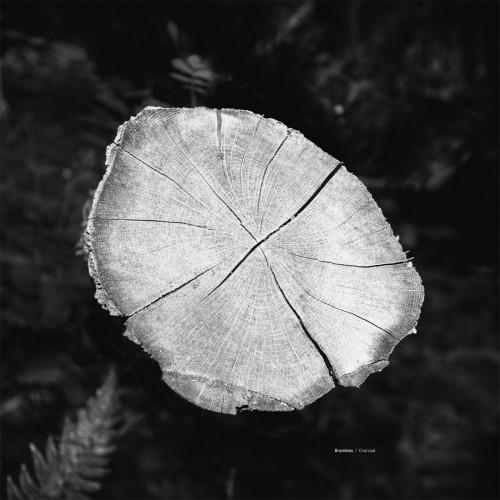BRAMBLES | Charcoral (Serein) - CD