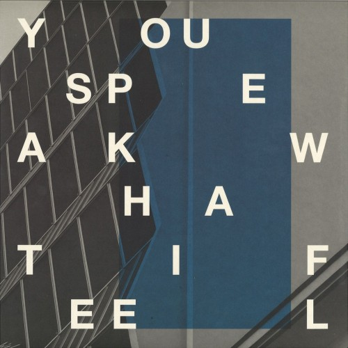 DJ SPRINKLES & SND | You Speak What I Feel (Boomkat Editions) - EP