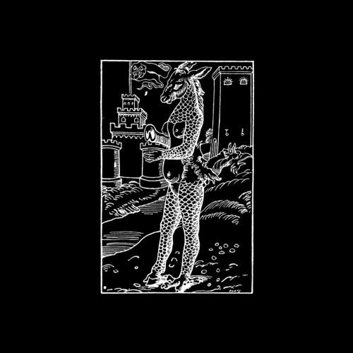 ONTAL | Pi 02 (Pi Electronics) - EP