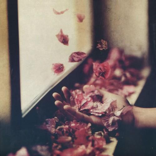 PETRE INSPIRESCU | Vîntul Prin Salcii (Mule Musiq) - CD/LP