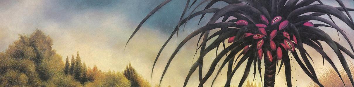 MIDORI TAKADA | Through The Looking Glass – CD/LP/2xLP