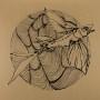 FEDERSEN | The Myth (Tiefenrausch) - EP