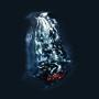 FIS & ROB THORNE   Clear Stones (Subtext) - LP
