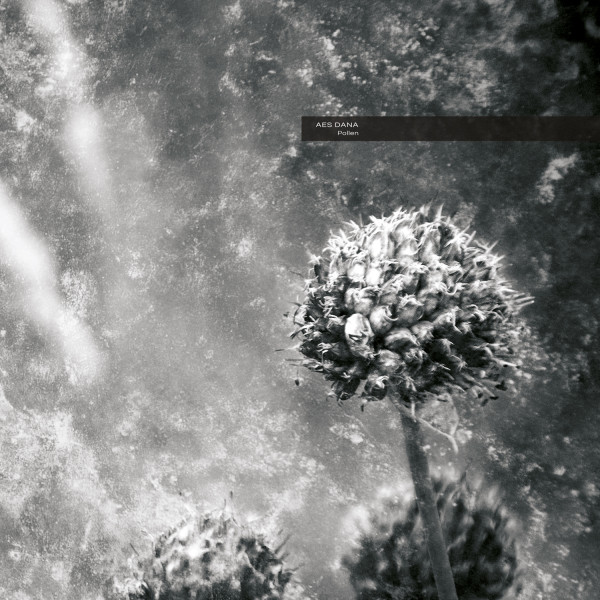 AES DANA | Pollen – CD/Digital/2xLP (Ultimae Records)
