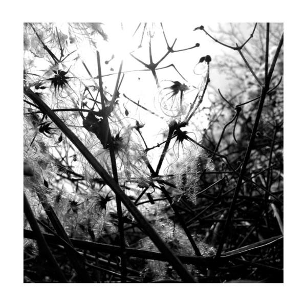 JOACHIM SPIETH | Irradiance (Affin LTD) –  2xLP