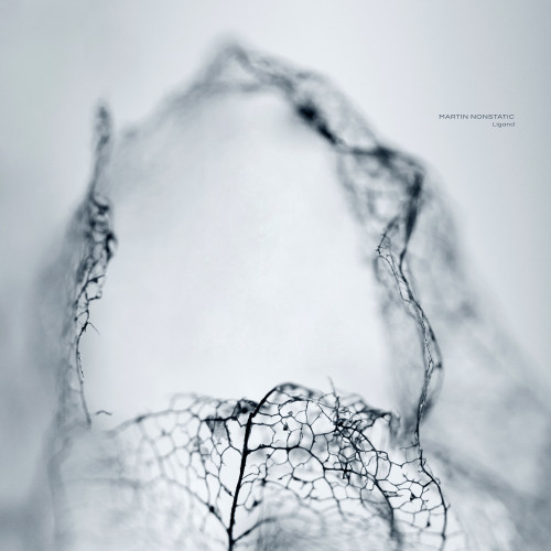 MARTIN NONSTATIC | Ligand (Ultimae Records) - CD/Digital/2xLP