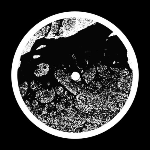 ASC | Eccentric Orbits (Silent Season) - EP