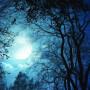 CRYSTAL MOON | Temple (...txt) - CD