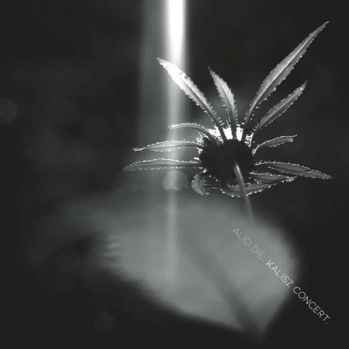 ALIO DIE | Kalisz Concert (...txt) - CD