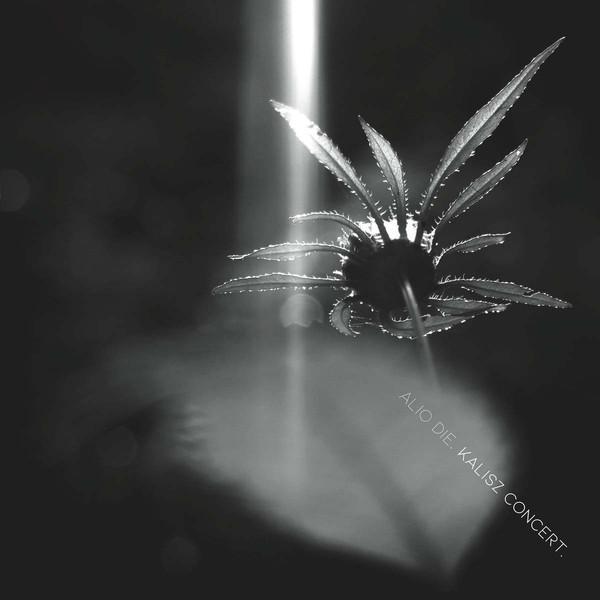 ALIO DIE | Kalisz Concert (…txt) – CD