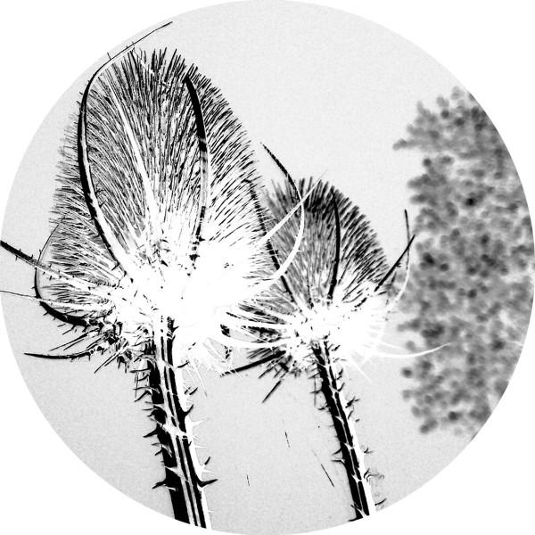 SVAROG | Environment (Affin LTD) – EP