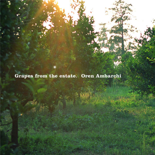 OREN AMBARCHI | Grapes From the Estate (Black Truffle) - 2xLP