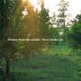 OREN AMBARCHI | Grapes From the Estate (Black Truffle) - 2xLP