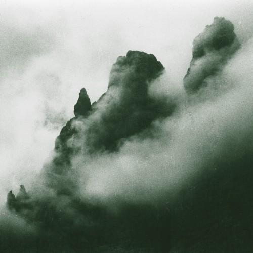 MASSIMO TONIUTTI | Il Museo Selvatico (Black Truffle) - 2xLP