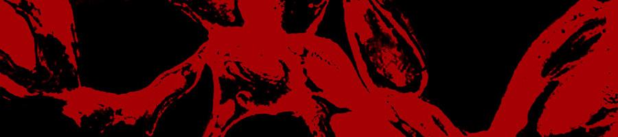 RAINFOREST SPIRITUAL ENSLAVEMENT | Red Ants Genesis (2xLP)