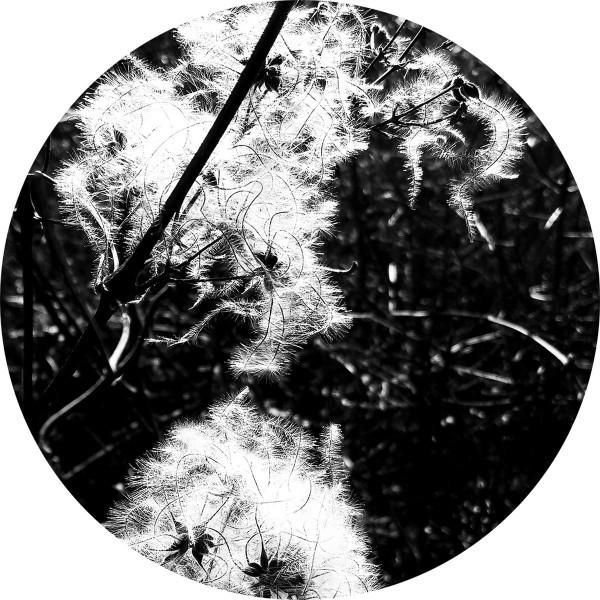 JOACHIM SPIETH | Irradiance Reworked (Affin LTD)