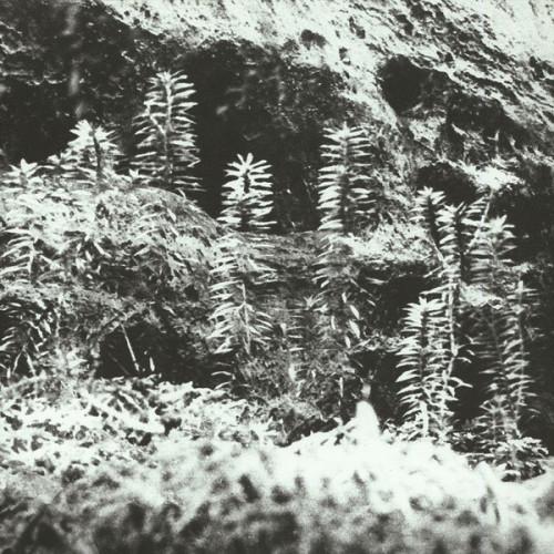 ACRONYM & KORRIDOR | Untitled (Vaagner) - EP