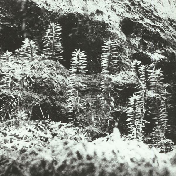 ACRONYM & KORRIDOR | Untitled (Vaagner) – EP