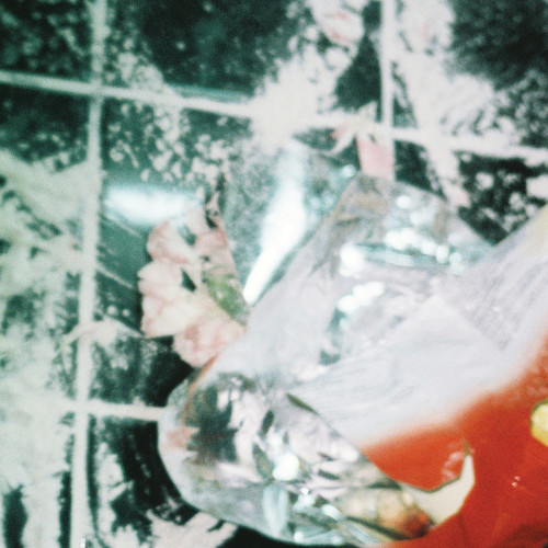 SHXCXCHCXSH | Shulululu (Avian) - EP