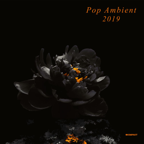 POP AMBIENT 2019 - Various Artists (Kompakt) - 2xLP