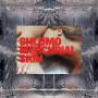 SHLOMO | Mercurial Skin (Taapion Records) - 2xLP
