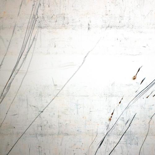 STEPHEN VITIELLO & TAYLOR DEUPREE | Fridman Variations (12k) - LP