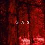 GAS | Zauberberg (Kompakt) - 3xLP