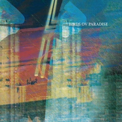 BIRDS OV PARADISE | Konstrukt 010 (Konstrukt) - EP