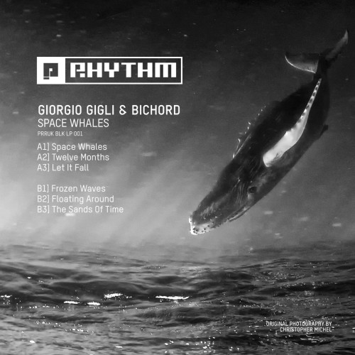 GIORGIO GIGLI & BICHORD | Space Whales (Planet Rhythm Records)
