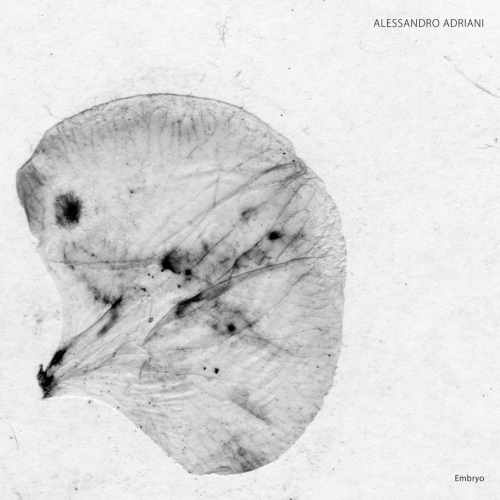 ALESSANDRO ADRIANI | Embryo (Stroboscopic Artefacts) - EP