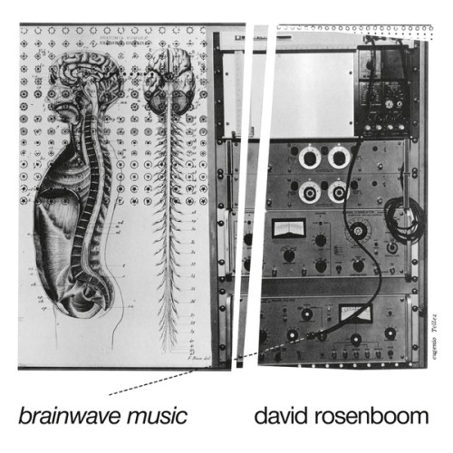 DAVID ROSENBOOM | Brainwave Music (Black Truffle) -2xLP