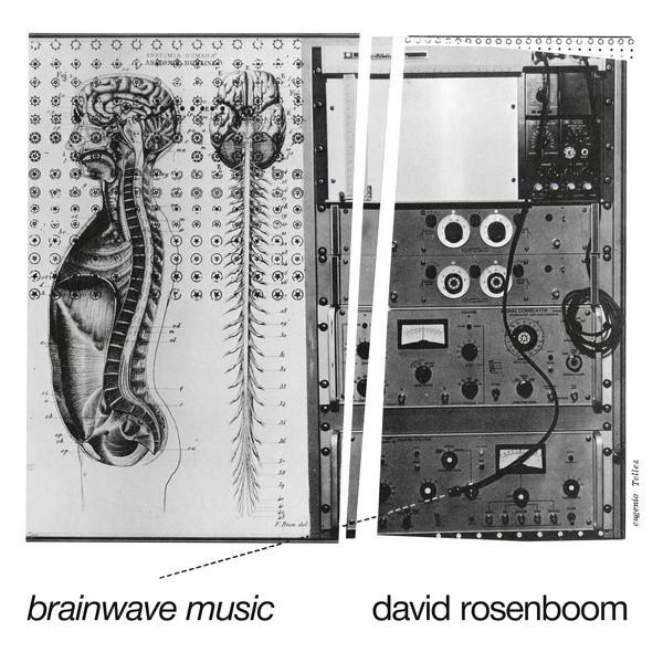 DAVID ROSENBOOM | Brainwave Music (Black Truffle) -2xLP
