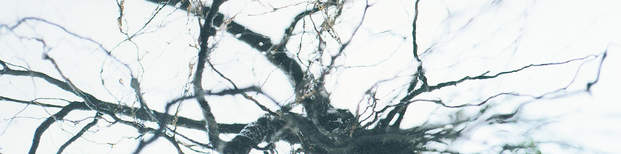 YUTAKA HIROSE | Nova + 4 (WRWTFWW Records) – 2xLP/2xCD