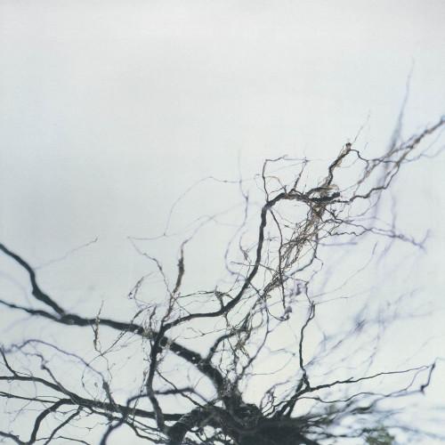 YUTAKA HIROSE | Nova + 4 (WRWTFWW Records) - 2xLP/2xCD