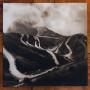 ESKOSTATIC | Serpentines & Valleys (Ultimae Records) - 2xLP